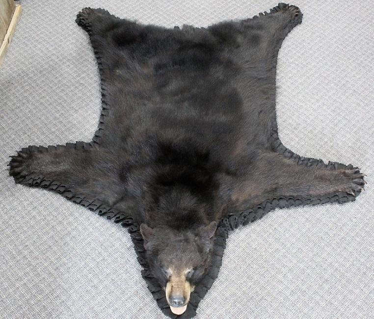 Measuring At 77 This Gorgeous New Black Bear Rug Has Beautiful Thick Fur Double Felt Border